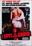 Poster de la película La violencia del sexo