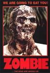 DVD de Nueva york bajo el terror de los zombies